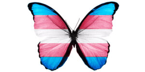 Trans-flag-butterfly-800x400w